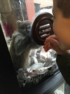 Char Exotic Pets #3